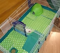 Fleece-lined guinea pig cage