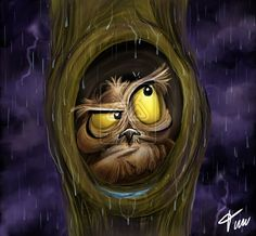 Owl at rain by timwell.deviantart.com on @deviantART