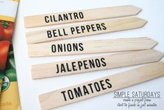 Vinyl Plant Labels or you can even use Popsicle sticks!