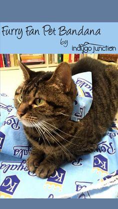 Sewing Hacks, Sewing Projects, Pet Tips, Cat Treats, Pet Id Tags, Diy Stuffed Animals, Dog Bandana, Four Legged, Dog Cat