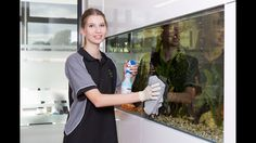 Office cleaning services have now become an essential necessity. Both residential and commercial work places get dirty due to effect of time and pollution. http://www.spiffyclean.com.au/hire-dependable-cleaning-contractors-avail-wide-array-services