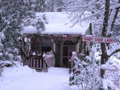 Faeryhollow's Santa's Workshop 2010, My potting shed became Santa's workshop again this year, and a beautiful Christmas snow provided the perfect setting., I enjoy transforming Crickhollow Cottage, my potting shed, into Santa's Workshop and Candy Cane Kitchen at Christmas.   , Holidays Design