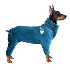 Le Plus Grand Chien, Bulldog Puppies For Sale, Pet Dogs, Pets, Christmas Puppy, Dog Jacket, Warm Coat, Large Dogs, Pet Shop