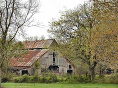 Farm Barn, Old Farm, Country Barns, Country Life, Country Living, Workshop Shed, Barn Pictures, Barn Animals, Shed Homes