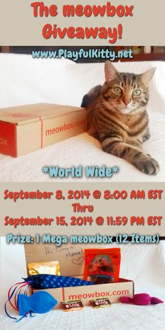 Enter to win a MEGA meowbox with 12 goodies for your kitties! www.PlayfulKitty.net @getmeowbox #PlayfulKitty