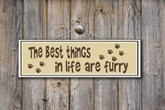 The best things in life are furry  -photo credit to the owner #dogs #cats