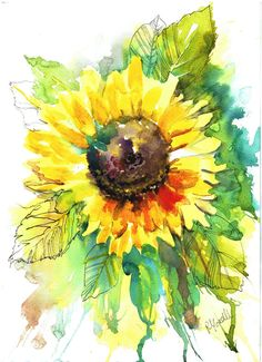 Original painting. unique ready to frame sunflower illustration with watercolour and pen design.