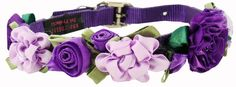 Fancy Dog Collar and Leash, Small Dog Collar, Teacup, Extra Small Online Puppy Boutique
