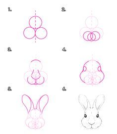 How to draw animals: rabbits and rabbits - Tuts + design & illustration tutorial ˜ . - How to draw animals: rabbits and rabbits – Tuts + Design & Illustration Tutorial ˜ …, - Doodle Drawing, Drawing Sketches, Painting & Drawing, Panda Drawing, Sketching, Anatomy Drawing, Drawing Faces, Illustration Tutorial, Illustration Vector