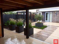Stam Hoveniers - Moderne tuin - Hoog ■ Exclusieve woon- en tuin inspiratie.