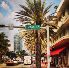 Ocean Drive in Miami Miami Beach, Miami Florida, Florida Beaches, Miami Ocean Drive, South Florida, Dream Vacations, Vacation Spots, Oh The Places You'll Go, Places To Travel