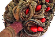 velvet, silk, and lipstick    magnolia seed pod  (mary jo hoffman)