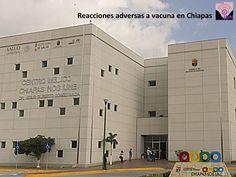 Buena noticia, 3 niñas y 2 niños de los 29 hospitalizados, fueron dados de alta del hospital Dr. Gilberto Gómez Maza, por reacciones adversas supuestamente a la aplicación de vacunas en Chiapas. La Comisión Federal para la Protección contra Riesgos Sanitarios (COFEPRIS) y de la Secretaría de Salud (SSA), continuan con la investigación de las causas.