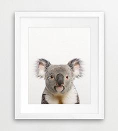 Koala Bear Print, Koala Bear Wall Art, Animal Print, Australian Animal, Nursery Animal, Baby Gift, Kids Room Wall Art, Printable Download
