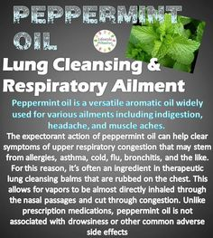 peppermint oil- lung cleansing & respiratory ailment