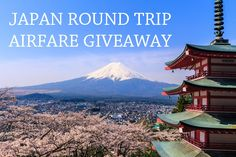 Help me win this adorable Japanese miniature shop decoration! I can't wait to use it in my room!
