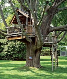 A big or small tree house bring lots of fun into backyard designs and create playful and youthful atmosphere. Tree house designs are wonderful backyard ideas that make adults and kids happy and joyful Backyard Treehouse, Treehouse Ideas, Treehouses For Kids, Magic Treehouse, Backyard Playground, Tree House Plans, Diy Tree House, Fun House, Tree House Designs