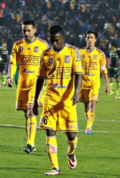 J6 Tigres 1-1 Santos Clausura 2014 (08 Febrero) Foto: Edgar Montelongo
