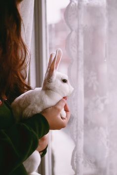 Find images and videos about white, vintage and indie on We Heart It - the app to get lost in what you love. Baby Bunnies, Cute Bunny, Bunny Rabbits, Easter Bunny, Baby Animals, Cute Animals, Wild Animals, Somebunny Loves You, House Rabbit