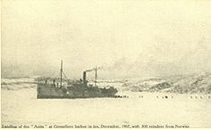 """Landing of the """"Anita"""" at Cremeliere harbour in ice, December 1907 with 300 reindeer from Norway."""