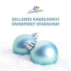 Kedves követőink és ügyfeleink! Kellemes karácsonyi ünnepeket kíván a SanOdor Kft egész csapata! 😊🎄 Érdeklődéseitekkel és megrendeléseitekkel keressetek bátran minket a két ünnep között is! Keto, Stud Earrings, Jewelry, Jewlery, Jewerly, Stud Earring, Schmuck, Jewels, Jewelery