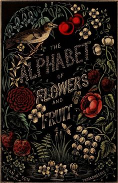 The Alphabet of Flowers and Fruit. London: Dean & Son, 1856    #design  #poster  #typography
