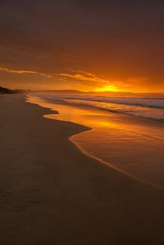 """sh-inaam: """" A golden sunrise from The Neck Beach on Bruny Island. by Andrew Fuller on """" Phuket, Bruny Island, Sunset Wallpaper, Beautiful Sunrise, Sunset Photos, Nature Pictures, Amazing Nature, Beautiful Landscapes, Nature Photography"""