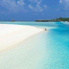 The Maldives Islands |Anantara Dhigu  Photo @travelforever #travel #view #awesome #wonderful #beautifuldestinations #exploremore #goodvibes #traveltheworld #traveladdict #travelblog #islandlife #nature #nofilter #instagram #mytinyatlas #passionpassport #traveldeeper #worlderlust #welltraveled #goexplore #maldives #luxuryhotels  #neverstopexploring #island #beach #visualsoflife #travelpictures  #photooftheday #paradiseisland  #finditliveit