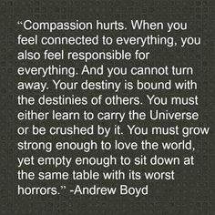 Andrew Boyd on Compassion