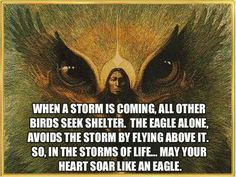Eagle medicine If the eagle has appeared to you in your dreams or visions and revealed itself as your totem animal you may expect to receive renewed strength of body mind and spirit At the same time you will find your meditations becoming more profound and your visions more prophetic in content If you maintain a harmonious and balanced lifestyle you will feel a stronger connection with the Great Mystery