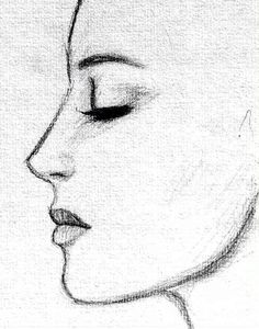 Profile Drawing