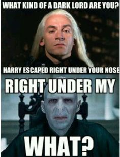 Poor Voldy. Kinda makes you want to pull your hair out, right? Oh, wait...