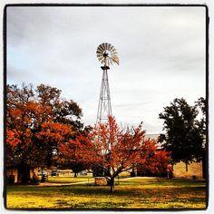 #fall #foliage  #hillcountry #vineyard  #beckervineyards #texas #txwine - @marcysansone- #webstagram