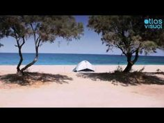 #Evia - Oktonia Greek Islands, Greece, Videos, Beach, Water, Summer, Outdoor, Greek Isles, Greece Country