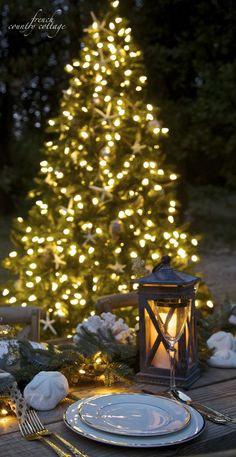 9-ft Allegheny outdoor Christmas tree creates an enchanted setting.