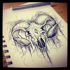 Ram skull doodle