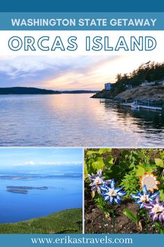 Orcas Island is one of the most popular destinations in Washington State. This guide to Orcas Island highlights the best things to do on Orcas and the top attractions in the San Juan Islands. Travel Guides, Travel Tips, Orcas Island, San Juan Islands, Love Island, Beautiful Islands, Washington State, Continents, Things To Do