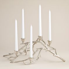 Silver Twigs Taper Candle Centerpiece   World Market