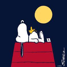 https://www.facebook.com/Snoopy/photos/a.164481990269232.46758.161564697227628/1130451973672224/?type=3