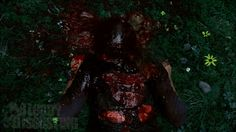 blood in the woods - Google Search