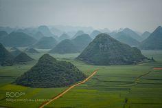 Louping yunnan china by enryba
