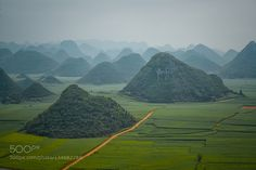 Louping yunnan china by enryba