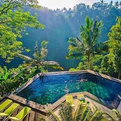 Jungle Pools in Ubud, Bali, Indonesia Photography by Timothy Sykes Voyage Bali, Destination Voyage, Florida Hotels, Hotels And Resorts, Florida Travel, Dream Vacations, Vacation Spots, Romantic Vacations, Vacation Travel