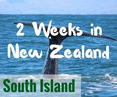 2 Weeks in New Zealand South Island: Sample Itineraries - FreeYourMindTravel Nz South Island, New Zealand South Island, New Zealand North, New Zealand Travel, Free Things To Do, Travel Abroad, Places Around The World, Australia Travel, Dream Vacations