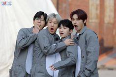 Seventeen Going Seventeen, Seventeen Memes, Seventeen Album, Seventeen Wonwoo, Woozi, Jeonghan, Vernon, Kpop, Hip Hop