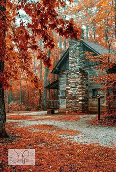 Near Wiseman's View, Western North Carolina. This would be mine, if it was further west :)
