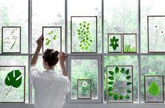 Objectif : faire rentrer la deco nature avec nous.DIY deco avec des plantes cadre feuille feuillage decoration