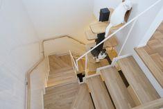 Cat Room, Bath Caddy, Furniture Design, Interior, Life, Gatos, Indoor, Interiors