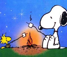 "'""Woodstock knows that he is very small and inconsequential indeed. The universe boggles us…Woodstock is a lighthearted expression of that idea. Schulz on Woodstock Snoopy Love, Snoopy Et Woodstock, Charlie Brown Y Snoopy, Peanuts Gang, Peanuts Cartoon, The Peanuts, Snoopy Cartoon, Camping Parties, Go Camping"