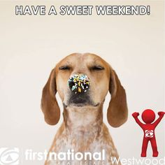 Have a great weekend!  #weekend #fridayfunday #friday #happyfriday #happyweekend #funnny #fun #thankgoditsfriday #playtime #weekendvibes #weekendmood #weekendishere #funtimes #tgif #realestate